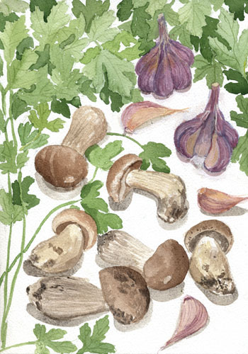cepes_mushroom